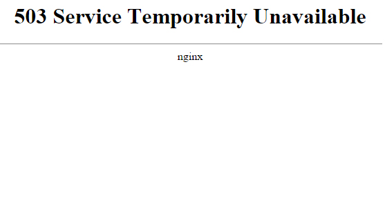 фото ошибки 503 service temporarily unavailable на Windows